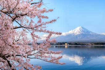 <strong>CWT VACATIONS EXCLUSIVE&nbsp;</strong><br />
